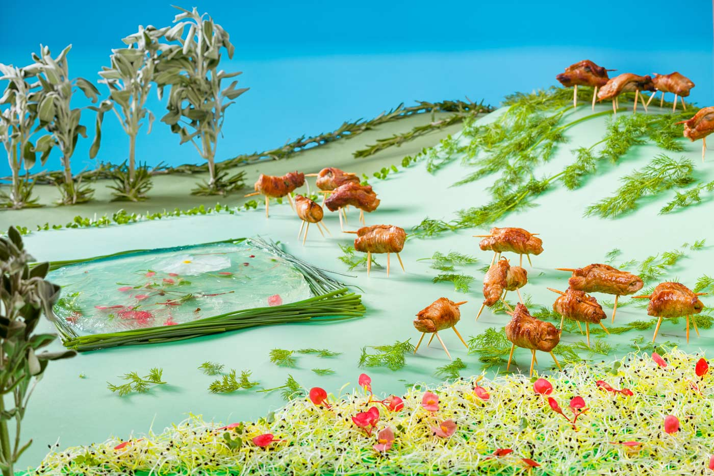 Landscape made out of food, beef rolls with sprout salad and salvia