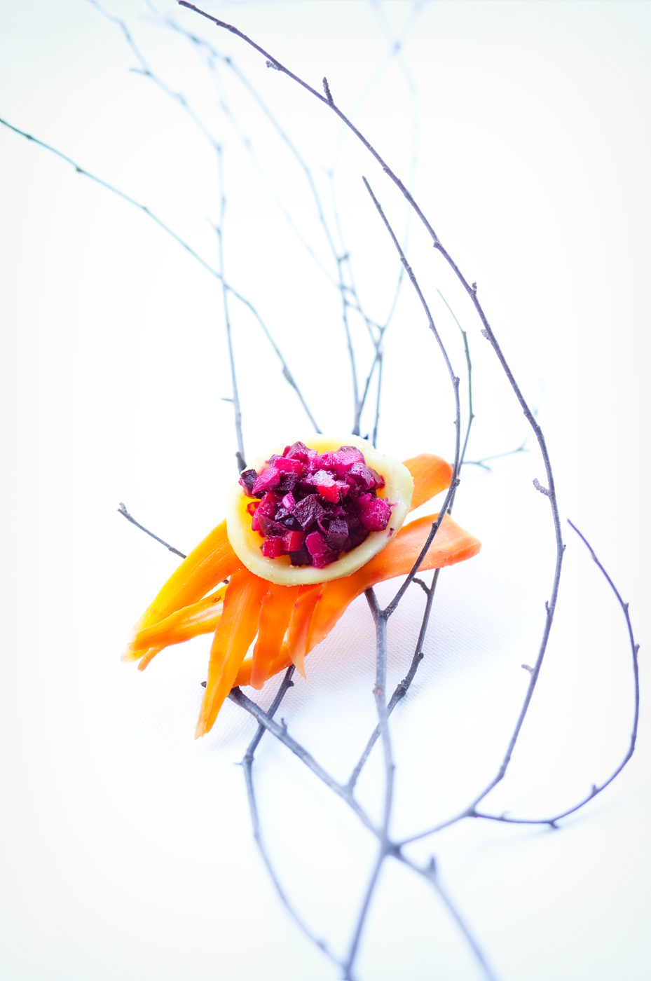 Recipe image depicting a red beetroot salad with carrots placed on a branch