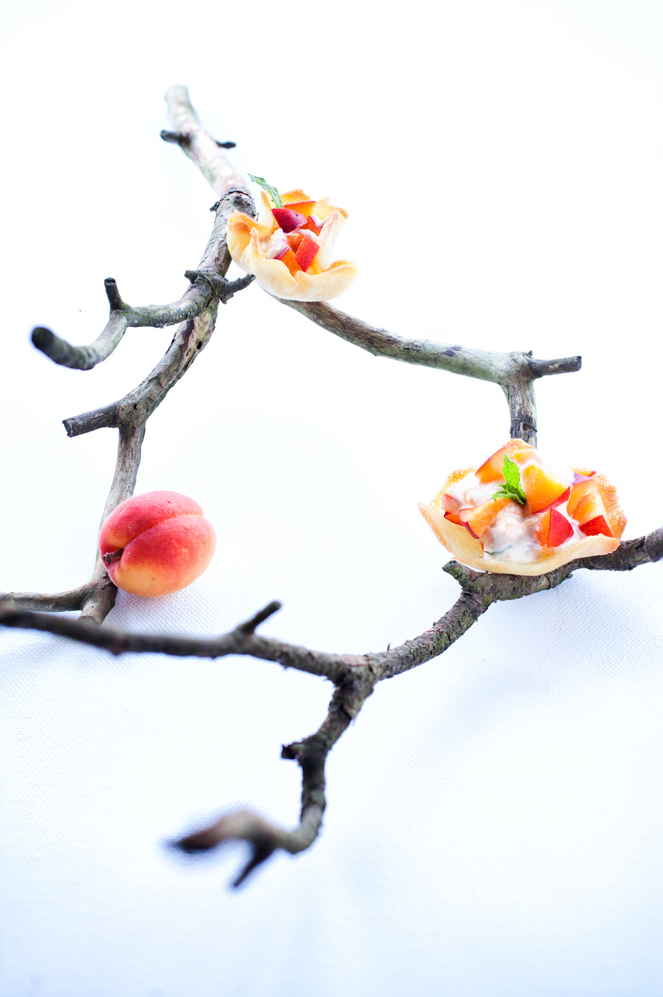 Recipe image depicting shortcrust pastries placed on a branch