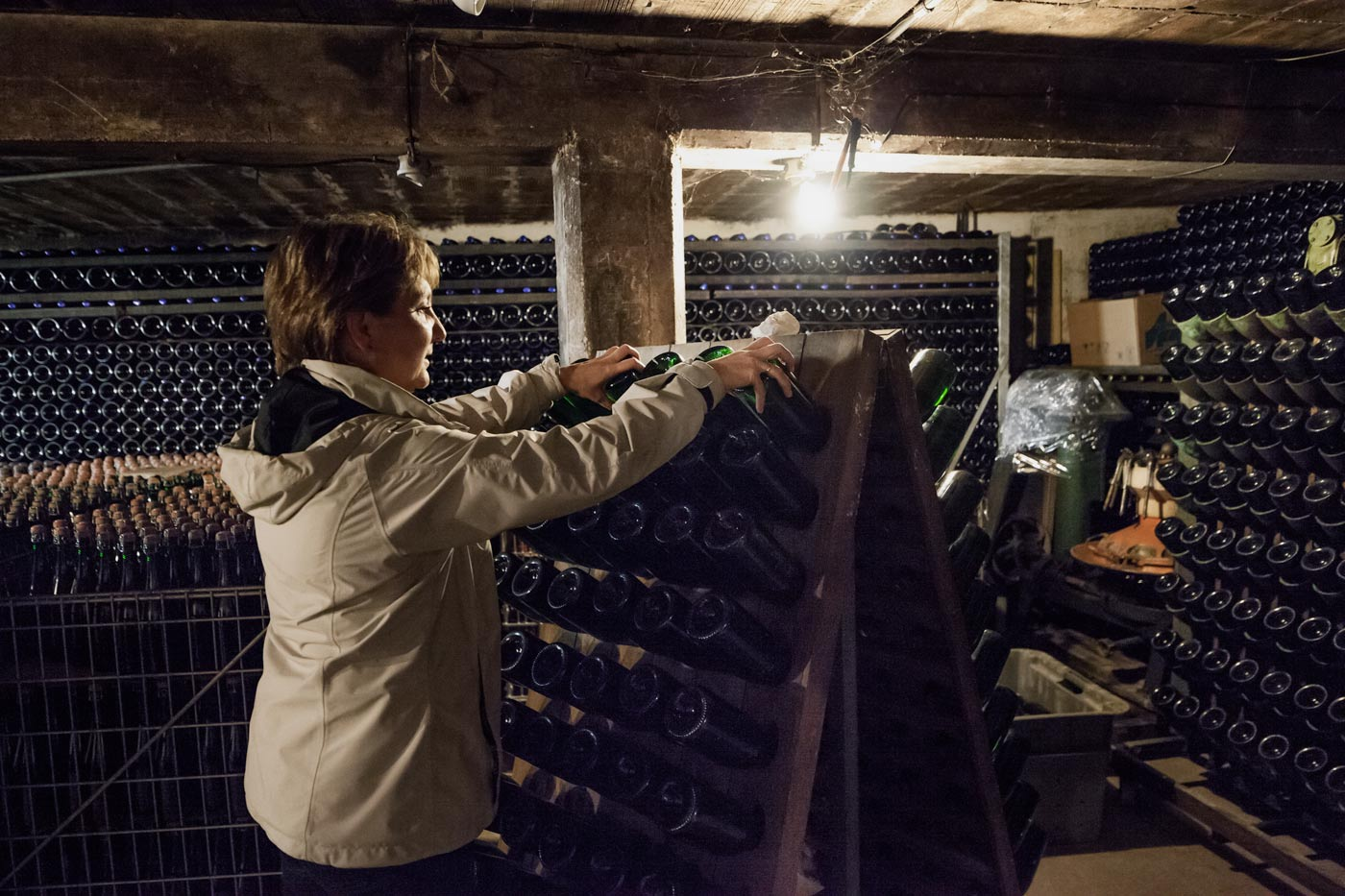 A vine maker at work in the french Champagne region